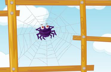 fence spider