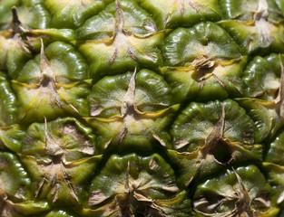 Ananas texture