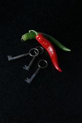 2 Schlüssel mit Chillischoten -Scharf und Sicher