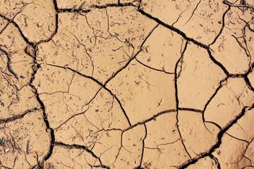 parhed soil
