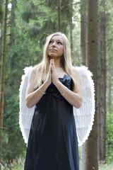 goldener engel_8