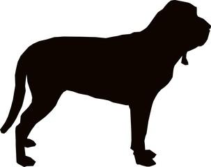 Bloodhound Sillhouette