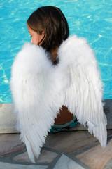 ailes du petit ange
