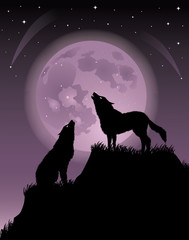 Two wolfs.