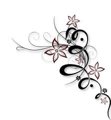 Blume, Ranke, Blüten, filigran, floral