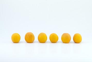 Aprikosen in einer Reihe 2