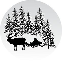 boy on sleigh in forest