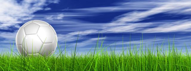 white 3d soccer ball on green grass over a natural blue sky