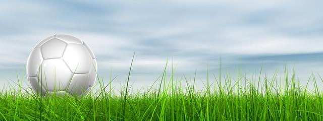 3d soccer ball on green grass over a natural blue sky