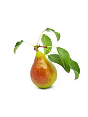 Ripe bright pear with leaves on a white background