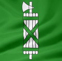 Flagge des Kantons St. Gallen - Schweiz