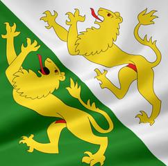 Flagge des Kantons Thurgau - Schweiz