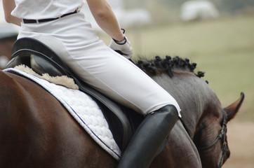 Foto auf AluDibond Reiten Woman on a horseback