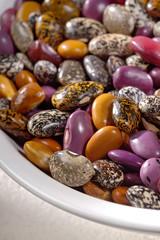 Wild Pinto Beans