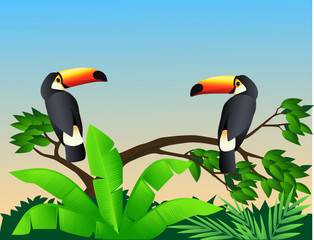 Poster Forest animals Toucan bird