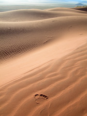 footprint on sand dunes in Kalahari Desert, Namibia, Africa