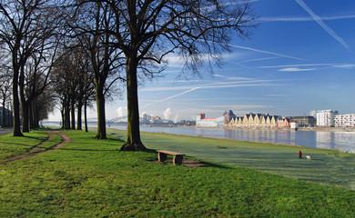 Rheinauhafen von den Poller Wiesen