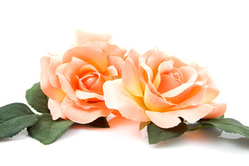Silk orange roses over white background