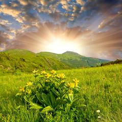 Fototapete - Sunset in mountains