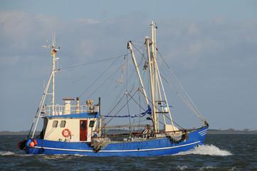 kutter krabbenkutter ostsee nordsee