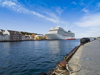 Large Cruise Ship