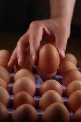 picking up an egg.
