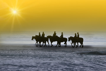 Morning sun horse ride. (moving on the sun)