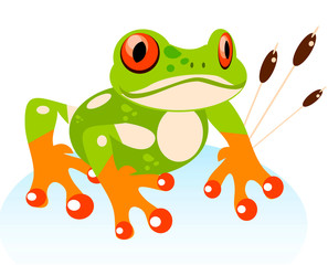 Cute Cartoon Friendly Frog, Colorful Red-eyed Tree Frog