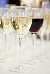 White and red wine glasses on blurred background