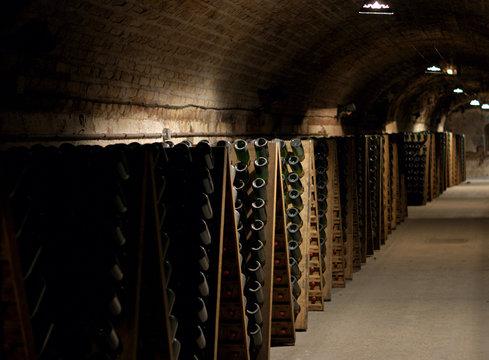 Champagne Cellar