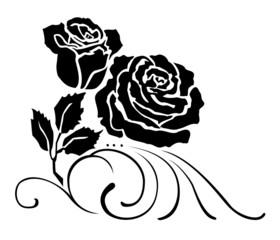 corner roses vector