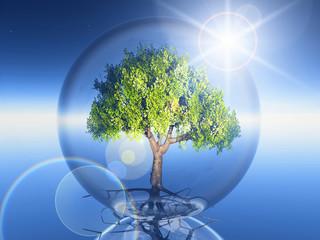 arbre en bulle et soleil