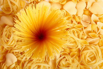 Several types of spaghetti and pasta can be used as background