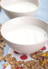 Bowl with white milk and cornflakes