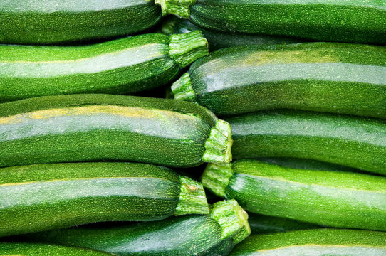 Zucchini, Gemüse, grün