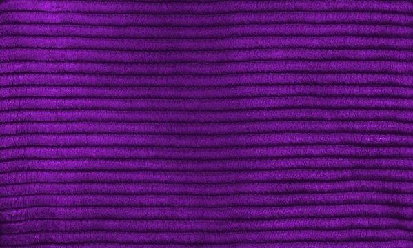 purple_cord_stripes