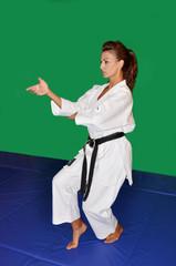 Karate fight pose