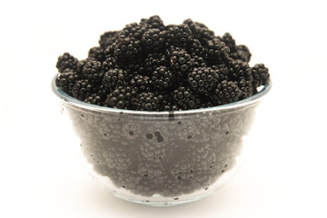 Blackberry on a white background