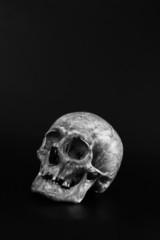 single skull
