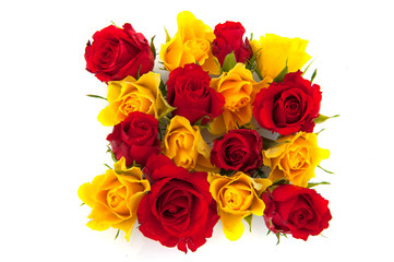 red and yellow roses