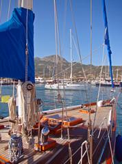 Le port de Calvi, Corse