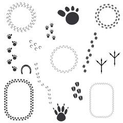 animal tracks - vector