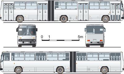 Vector detailed urban bus