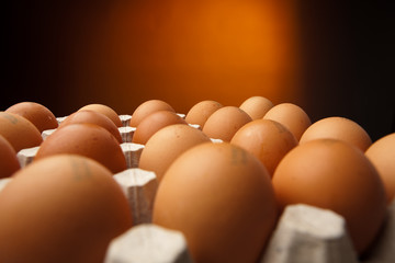 chicken eggs in the container