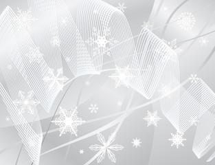 The blizzard of white snowflakes