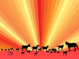 Eine Auswahl Farmtiere vor abstraktem Hintergrund