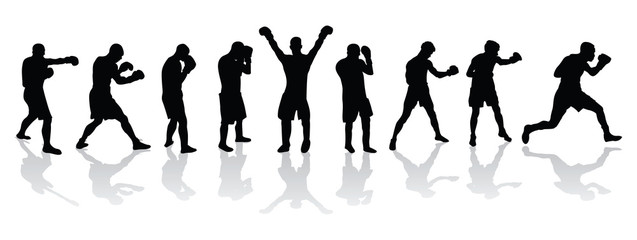 boxers in a line vector image