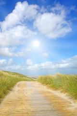 Fototapete - Idyliische Sommerlandschaft an der Nordsee