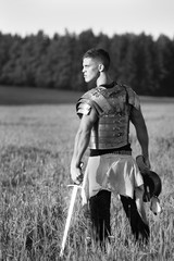 Fotorolgordijn Ridders One Roman soldier in field.