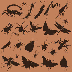 vector collection of bugs
